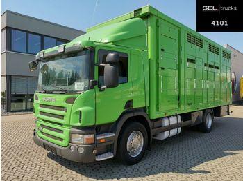 Camion bétaillère Scania P380DB4X2MNA / 2 Stock